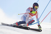 pyeongchanggun south korea ted ligety usa