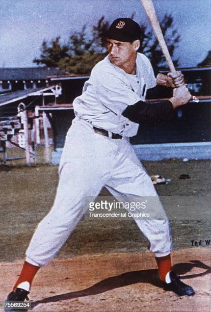 SARASOTA FLORIDA MARCH 1953 Ted Williams takes batting practice at the Boston Red Sox spring training facility in Sarasota Florida in March of 1953