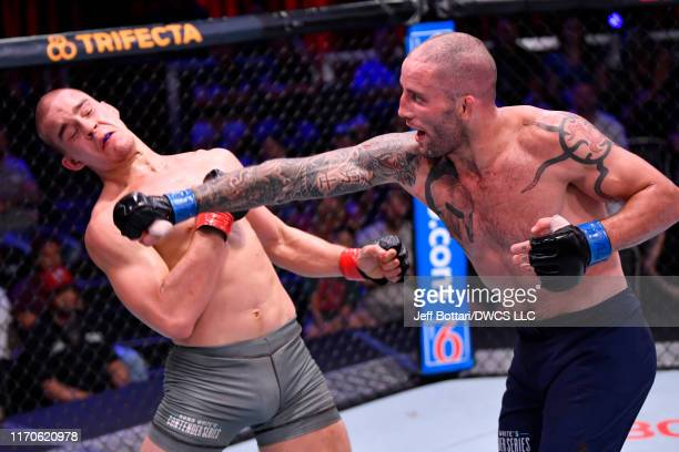 Teddy Ash punches Dusko Todorovic in their middleweight bout during Dana White's Contender Series season three week 10 at the UFC Apex on August 27...