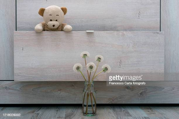 teddy bear and dandelions flower - tempio pausania stock pictures, royalty-free photos & images