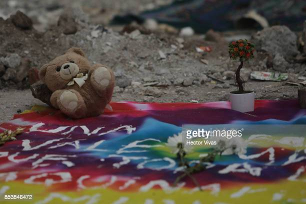 A teddy bear and flowers are seen in the collapsed sewing factory at Colonia Obrera six days after the magnitude 71 earthquake jolted central Mexico...