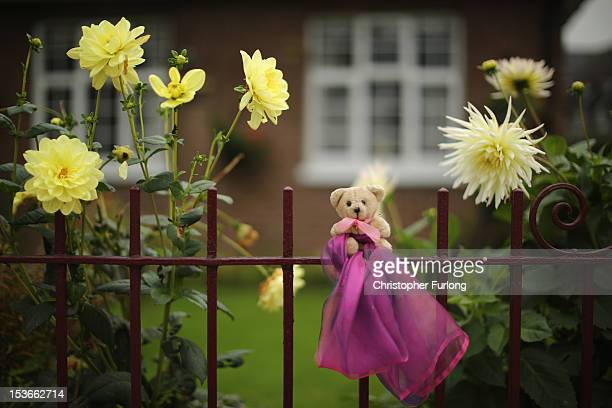 A teddy bear and pink ribbon the symbol of 'Find April' sits on a garden fence as police continue their search to find fiveyearold April Jones on...