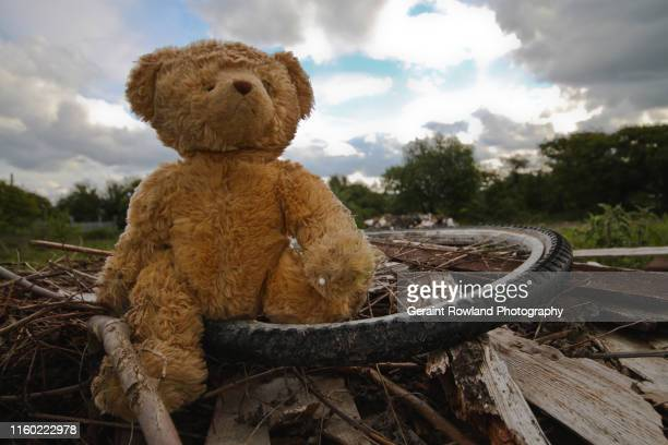 teddy bear and pollution, wales - environmental issues stock pictures, royalty-free photos & images