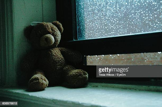 Teddy Bear By Wet Window During Rainy Season At Home