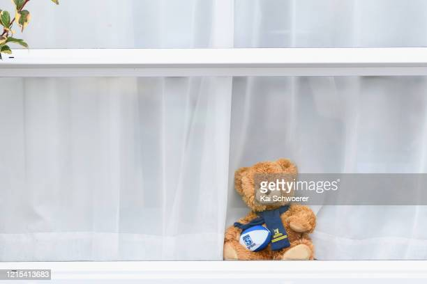 Teddy bear dressed as a Highlanders Super Rugby fan is seen in a window on March 29, 2020 in Christchurch, New Zealand. Inspired by the Michael Rosen...