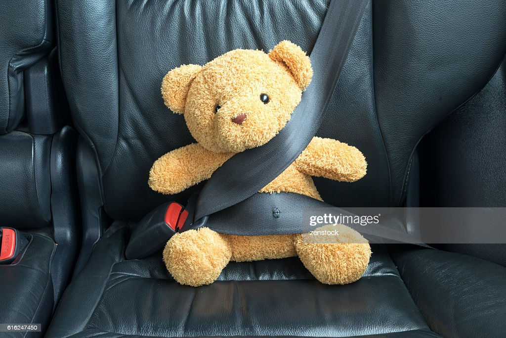 Teddy bear fastened in the back seat of a car : Stock Photo