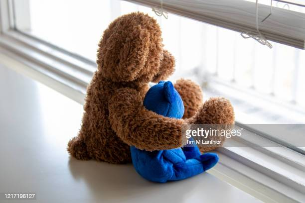 teddy bear friends looking out of a window - teddy bear stock pictures, royalty-free photos & images