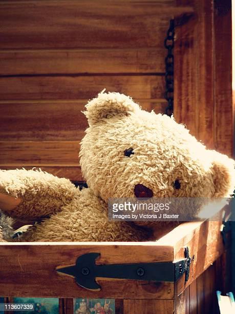 Teddy bear in a toy box