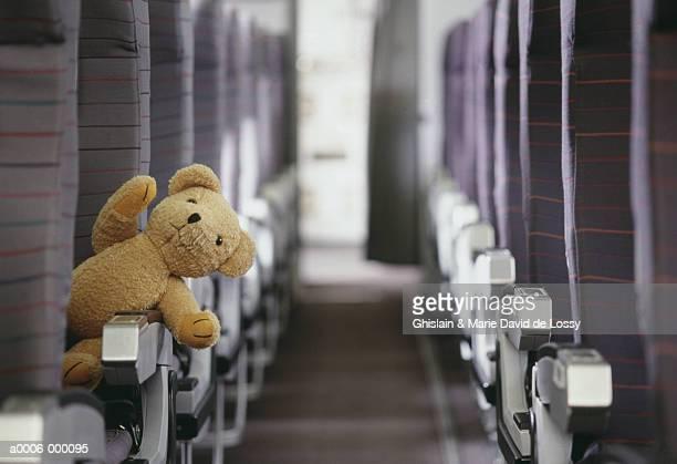 Teddy Bear in Aisle Seat