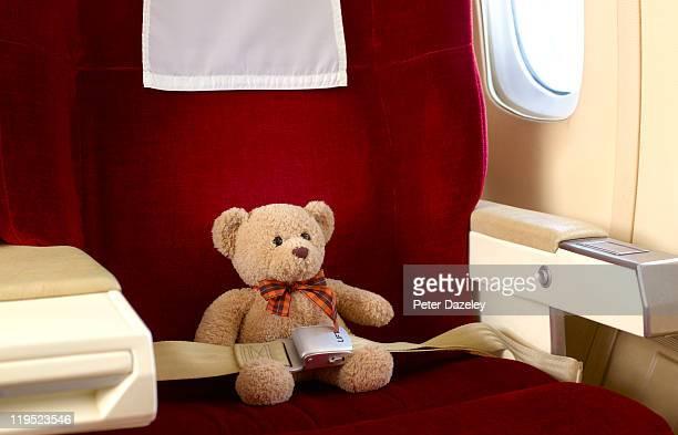 Teddy bear in first class seat
