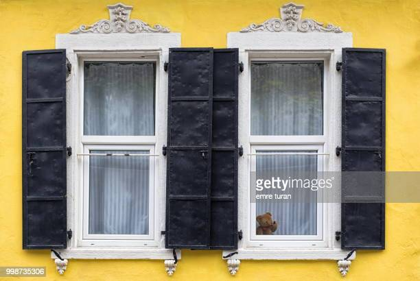 teddy bear in the window(DSCF5756-2.jpg)