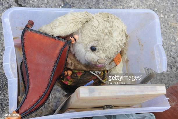 A teddy bear is seen among tons of debris caused by the flood during Sunday's rainstorm on September 16 2017 in Livorno Italy Livorno in Tuscany was...