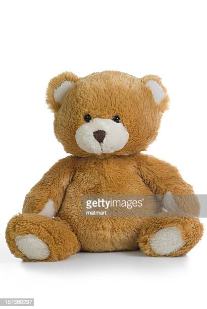 A teddy bear isolated on a white background
