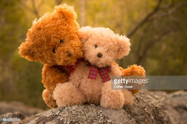 teddy bear love - teddy bear stock pictures, royalty-free photos & images