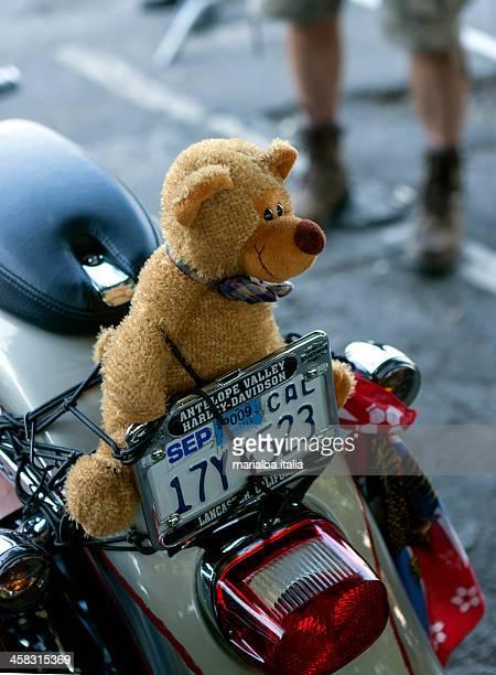 teddy bear mascot - italia stockfoto's en -beelden