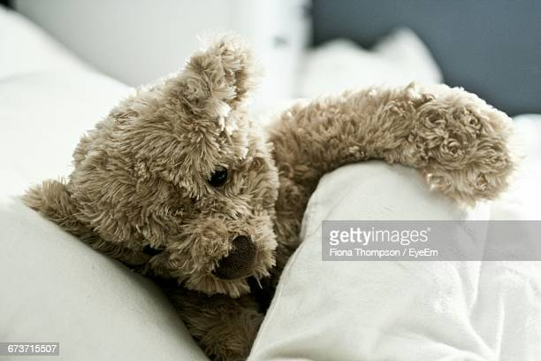 Teddy Bear On Bed At Home