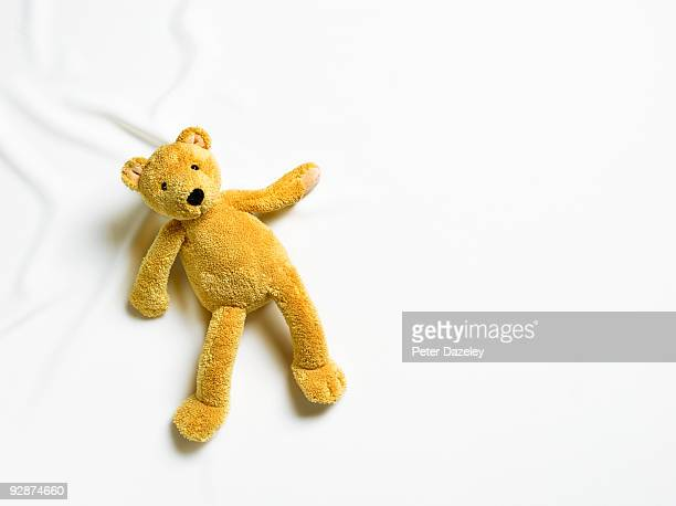 Teddy bear on white background.