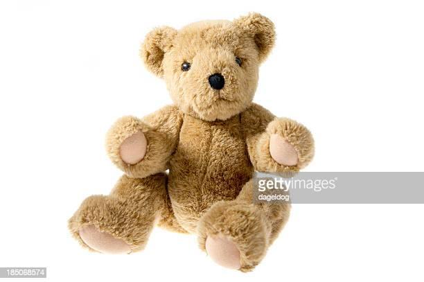 Teddy Teddybär