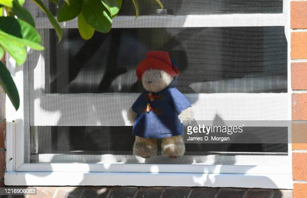 """Teddy bear sits inside a window on the Lower North Shore district as part of a worldwide """"bear hunt"""" to entertain children during the coronavirus..."""