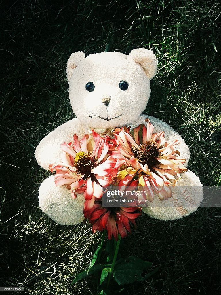 Teddy Bear With Flowers : Foto stock