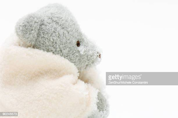 Teddy bear wrapped in blanket, lightly snow-covered