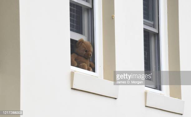 Teddy Bears and other stuffed toys in the windows of houses and apartments on the Lower North Shore district during a worldwide Teddy Bear hunt...