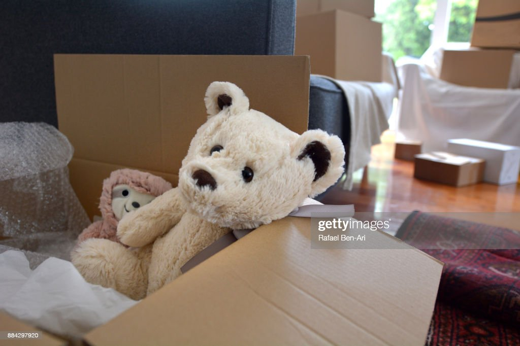 Teddy bears dolls in a moving box : Stock-Foto