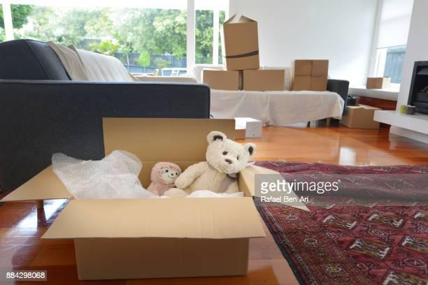 teddy bears dolls in a moving box - rafael ben ari imagens e fotografias de stock