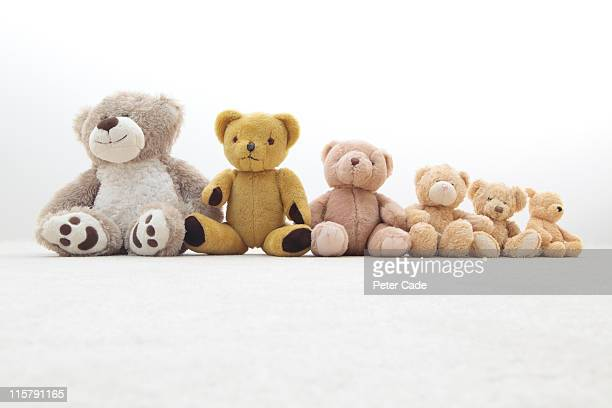 teddy bears in a row - medium group of objects stock pictures, royalty-free photos & images