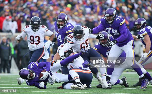 Teddy Bridgewater of the Minnesota Vikings gets sacked by Jeremiah Ratliff of the Chicago Bears in the fourth quarter on December 28 2014 at TCF Bank...