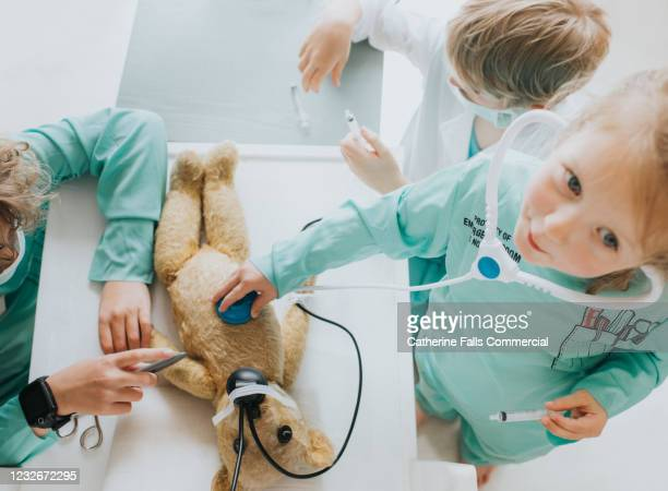 teddy has surgery - human internal organ stock pictures, royalty-free photos & images