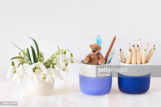 teddy in a pencil cup - desk toy stock photos and pictures