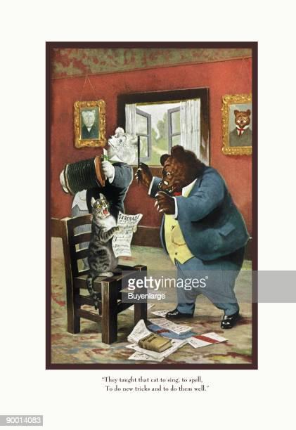 Teddy Roosevelt's Bears That Cat