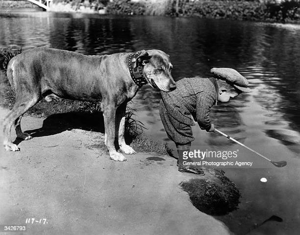 Teddy the Dog holds onto child actor Jackie Lucas by the tail of his golfing jacket as he tries to play a ball which is floating in a river A...