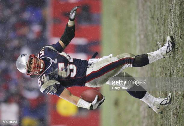 Tedy Bruschi of the New England Patriots during the game against the Indianapolis Colts in the AFC divisional playoff game at Gillette Stadium on...