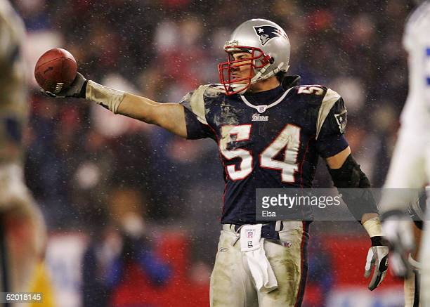 Tedy Bruschi of the New England Patriots recovers a fumble from the Indianapolis Colts during the AFC divisional playoff game at Gillette Stadium on...
