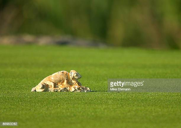 Tee box marker on the 8th hole during the first round Mayakoba Golf Classic at El Camaleon at Mayakoba in Playa Del Carmen, Mexico on February 22,...
