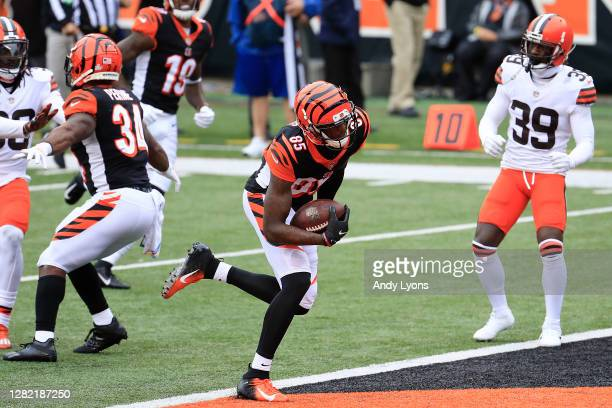 Tee Higgins of the Cincinnati Bengals scores a touchdown reception against the Cleveland Browns during the second half at Paul Brown Stadium on...