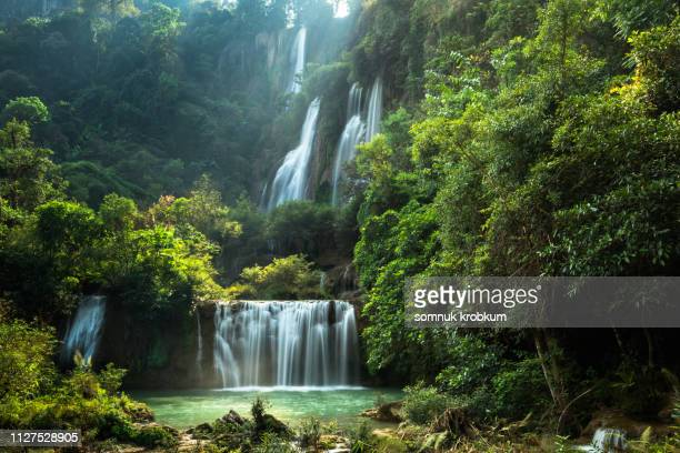 tee lor zu waterfall in summer - lush stock pictures, royalty-free photos & images