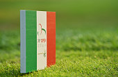 monza italy tee markers are seen