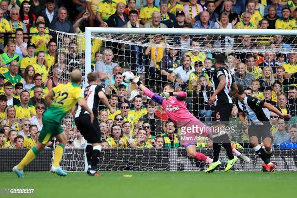 Teemu Pukki of Norwich City scores his team's first goal past Martin Dubravka of Newcastle United during the Premier League match between Norwich...