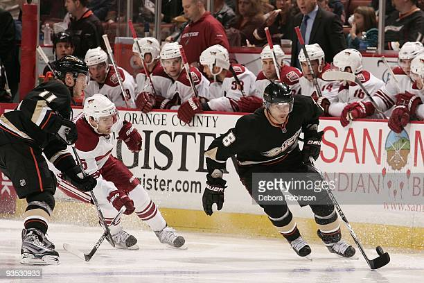 Teemu Selanne of the Anaheim Ducks handles the puck alongside the boards during the game against the Phoenix Coyotes on November 29, 2009 at Honda...