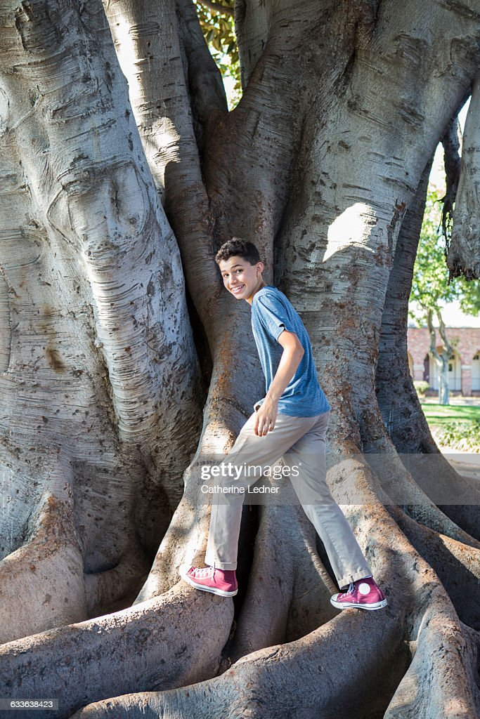 Teen Age Boy Playing On Large Magnolia Tree Roots Stock Photo