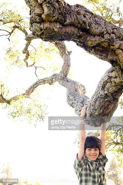 Teen boy climbing tree