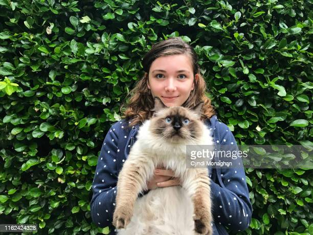 teen girl and her ragdoll cat - hairy girl stock pictures, royalty-free photos & images
