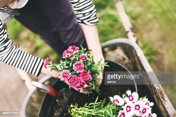 Teen Mädchen Blumen im Garten Pflanzen
