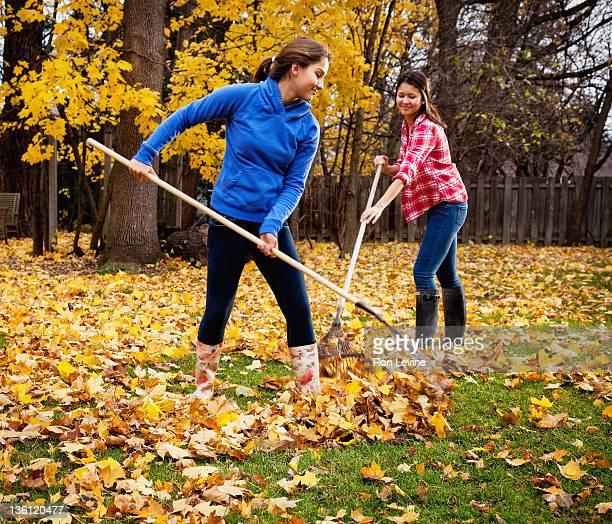teen girls raking the leaves in backyard - rake stock pictures, royalty-free photos & images