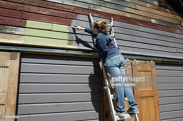 Teen painting barn