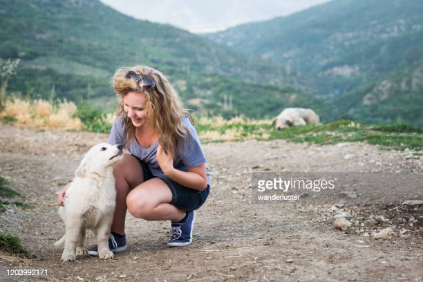 teen playing with puppies in italy - pastore maremmano foto e immagini stock