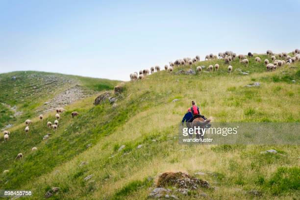 Teen riding a horse in Abruzzo mountains, Italy